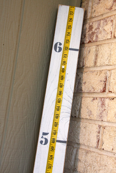Measuring Stick as Growth Chart