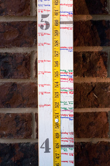Color Coded Growth Chart for Kids and Grandkids