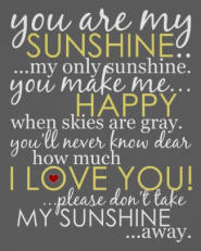 You Are My Sunshine Poster - Gray