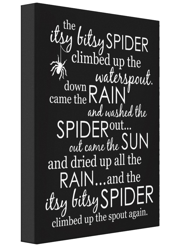 Itsy Bitsy Spider Wrapped Canvas - Black