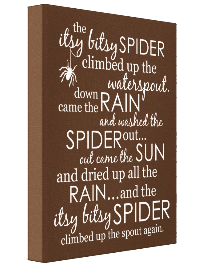 Itsy Bitsy Spider Wrapped Canvas - Brown