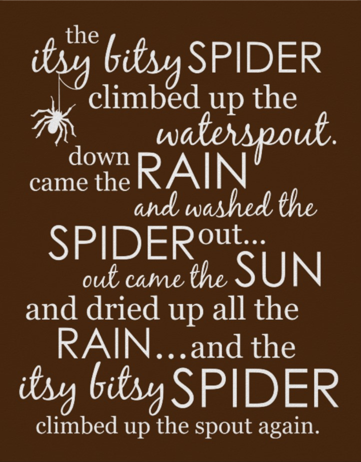 Itsy Bitsy Spider Poster - Brown